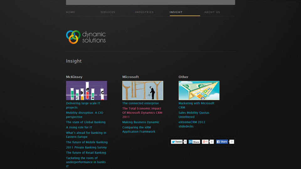 Dynamic Solutions Insight